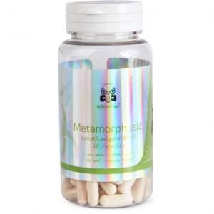 Mutagenic Labz Metamorphosiz (Epicat/Laxogenin)