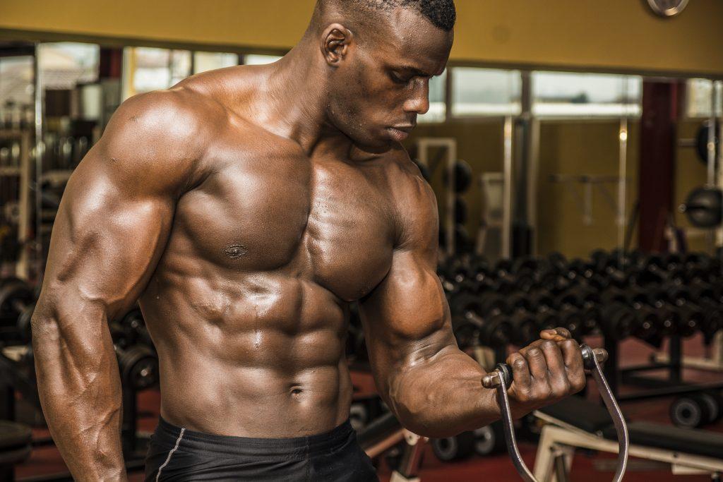 bodybuilder muscle dumbbell curls
